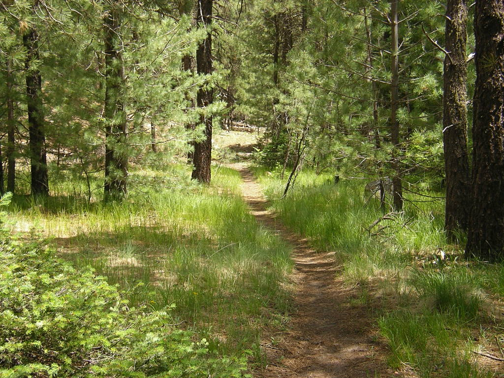 Celebrate National Trails Day® on Saturday, June 5th