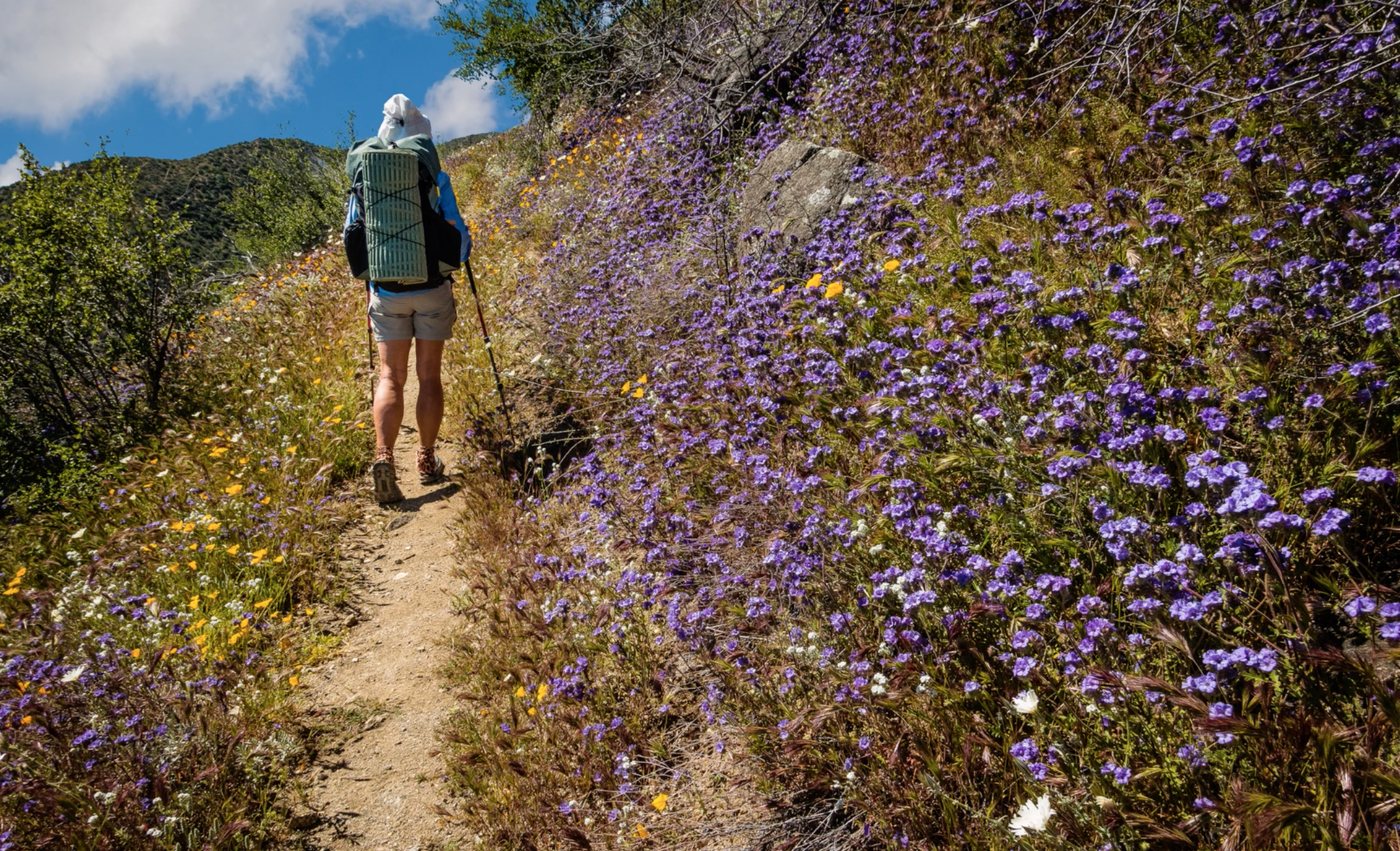 IMPORTANT Updates for AZT Thru-Hikers and Riders
