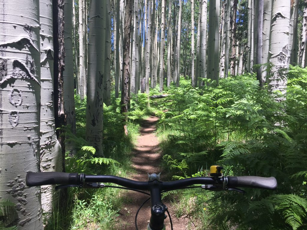 Perceptions of Conflict Surrounding E-Bikes on the Arizona Trail